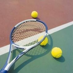 社会人サークル、エミシア、趣味サークル、テニス